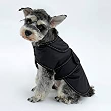 PAWZ Road 2 in 1 Dog Jacket,Pet Winter Coat Warm Vest for Small Medium Dogs and Cats,Waterproof and Windproof,With Reflective Strip Fit all Seasons Size M