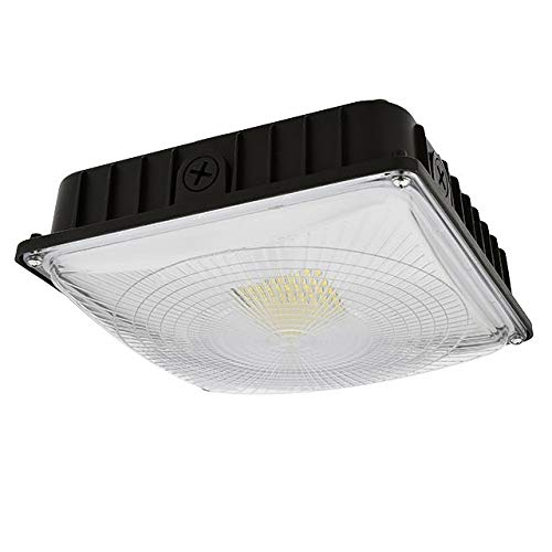 Ledwholesalers 70-Watt ETL-Listed & DLC-Qualified Dimmable LED Canopy Ceiling Light Fixture, Daylight 5000K, 3925WH-R2