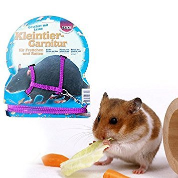 Kicode Hamster Gerbil Rat Pet Cage Playhouse Nylon Adjustable Harness Leash Lead Traction Rope with Bell