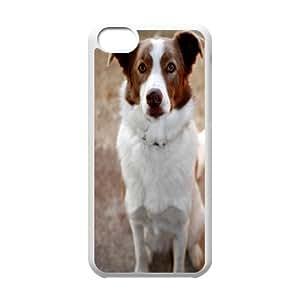 iPhone 5C Phone Case Dog P78K789416