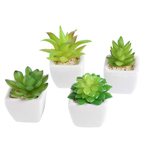 (Liry Products Set of 4 Assorted Artificial Potted Succulents Mini Faux Green Plants White Ceramic Square Pots Cube Shape Planters Modern Decor Home Office Indoor Outdoor Garden Verandah Wedding)