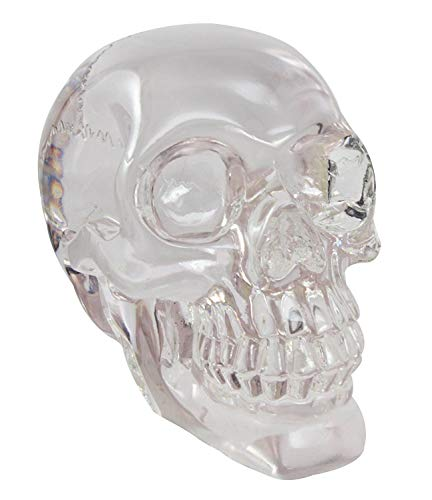 Figurine Paperweight Skeleton Head 6.5