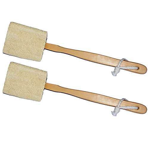 Mini Loofa (2 Pack Natural Exfoliating Loofah luffa loofa Bath Brush On a Stick - With Long Wooden Handle Back Brush For Men & Women - Shower Sponge Body Back Scrubber)