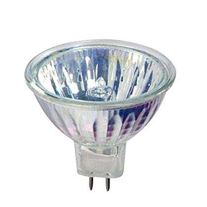 12v 50w Halogen Lamp - 8