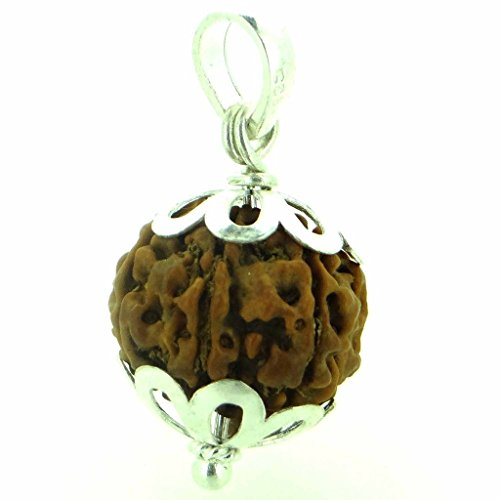 (Four Faced Charmukhi Rudraksha Seeds Loose Beads, Rudraksha Beads (Elaeocarpus ganitrus) 100% Original & Certified by ARIHANT GEMS & JEWELS & Jewels)