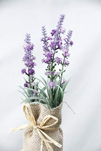 MDSTORY Artificial & Dried Flowers-Artificial Plant Burlap Bonsai Gypsophila Home Garden Christmas Decor Magnet Flower with vase Lavender Potted Grass Gift 1 Set (3)