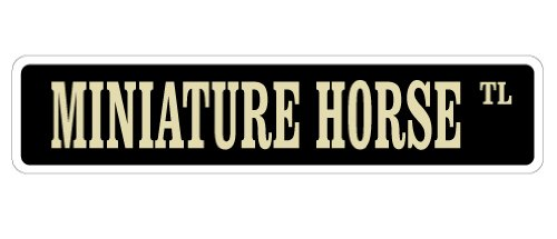Miniature Horse Street Sign Farm American Breed Owner