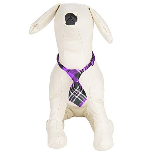 CueCu (Dog Business Suit Costume)