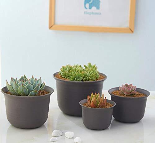10 flower pot - 5