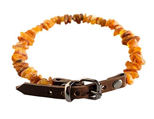 Bernsteinkette Zeckenhalsband für Hunde mit Lederschließe (50-55 cm)