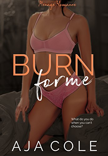 Search : Burn For Me: A Romance (The Banks Sisters Book 3)