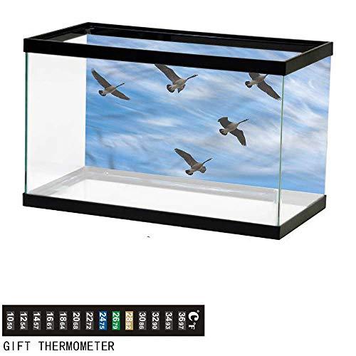 bybyhome Fish Tank Backdrop Geese,Flock of Canada Birds Spring,Aquarium Background,48