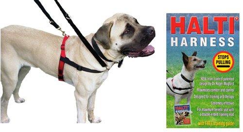 Arnés de perro Halti pequeño + guía de entrenamiento gratis ...