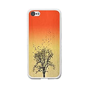 Coloful Pattern Wood Print Iphone 5c Hard Phone Cover Back Skin Protector Case