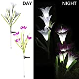 Solar Powered Lily Flower Lights Outdoor 2 Pack Artificial Flower Garden Decorative Landscape Waterproof Lamp with 8 Lily Flower for Path, Yard, Lawn,Patio(Purple and White)