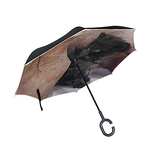 Inverted Umbrella Rain Sun Car Reversible Cat Kitten Pitcher Large Double Layer Outdoor Upside Down Umbrella with Women with Uv Protection C-Shaped Handle (Kitten Pitchers)