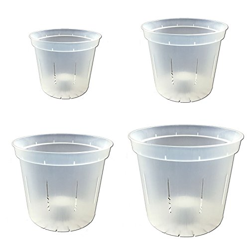 Slotted Clear Orchid Pots - Growers Assortment (8 pots - 2 each of 3'', 4'', 5'' and 6'') by rePotme