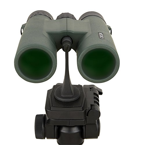 Carson JR Series 10x42mm Close-Focus Waterproof Binoculars for Bird Watching, Hunting, Sight-Seeing, Surveillance, Concerts, Sporting Events, Safaris, Camping, Travel and Outdoor Adventures (JR-042) by Carson (Image #6)