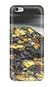 Fashionable Style Case Cover Skin Ipod Touch 4 - Earth Rock Nature Rock