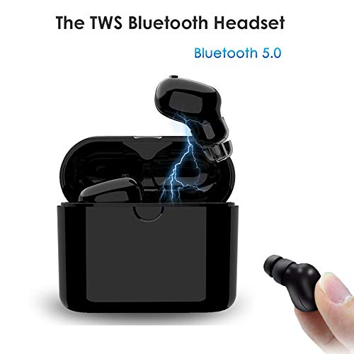Mini True Wireless Bluetooth Earbuds,Techbuds BT 5.0 Stereo Headphone Smallest TWS in-Ear Earphone Built-in Mic Invisible Earpieces with Portable Charging Box with Long Playing Time