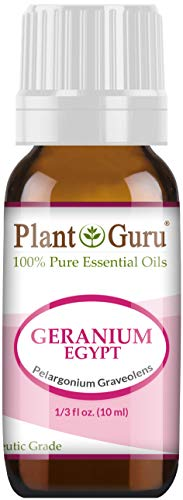 Geranium Egypt Essential Oil 10 ml 100% Pure Undiluted Therapeutic Grade.