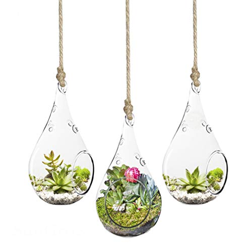 SunGrow 3-Piece Teardrop Hanging Terrarium, Mini Hanging Garden, Various Creative DIY Projects, Functional Home Or Office Dãƒcor, Transparent Heat-Resistant and Durable High Boron Silicon Glass (Hanging Teardrop Vases Glass)