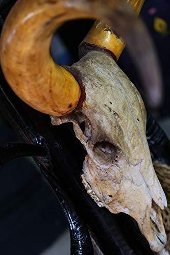 Home Comforts Laminated Poster Hunt Buffalo Dead Skull Vivid Imagery Poster Print 24 x 36