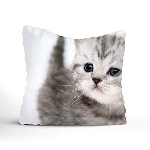 (YooSoeLink Special Design Interesting Small Cute Kitty Cotton Throw Pillow Case Home Custom Cushion Cover-Two Side 20