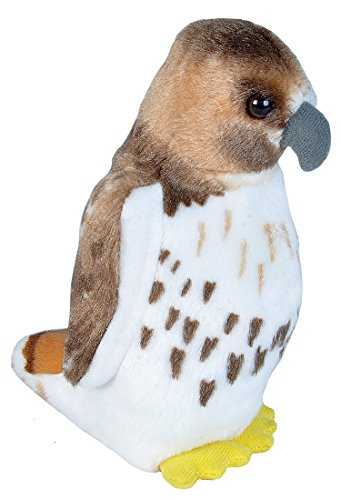 Wild Republic Audubon Birds Red Tailed Hawk Plush with Authentic Bird Sound, Stuffed Animal, Bird Toys for Kids & Birders
