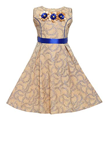Aarika Blue Colored Party Dress