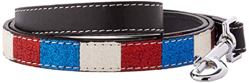 Mirage Pet Products Patriotic Ice Cream Collars Bones with 3/4-Inch Match Leash for Dogs from Mirage Pet Products
