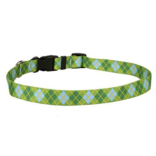 Yellow Dog Design Argyle Green Dog Collar Fits Neck 14 to 20
