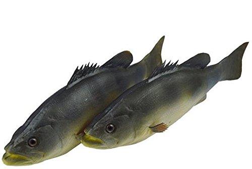 (SUN RISE 2pcs Simulated Animal Fish Realistic Striped Bass Model Playset Lifelike Fake Fish Market Display Kids Toy Kitchen Decoration)