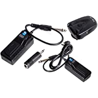 Cowboystudio 4-Channel Radio Remote Trigger with 2 Receivers for Studio Strobe