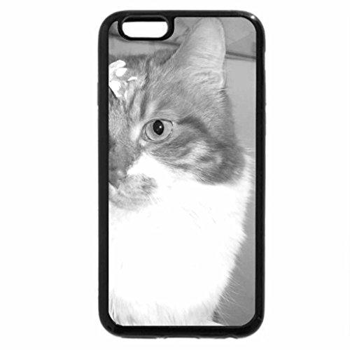 iPhone 6S Case, iPhone 6 Case (Black & White) - Cat Kitti