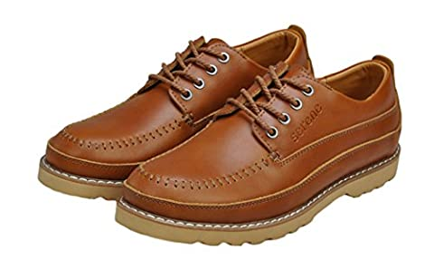 Serene Christmas Mens Classic Leather Brown Oxfords(9 D(M)US, Brown) (Rugged Bear Plush)