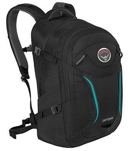 Osprey 10000581 Packs Perigee Daypack