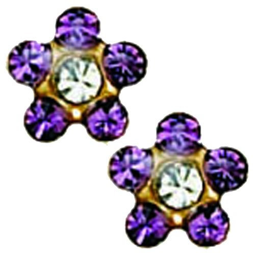 Inverness 24K Gold Plated Piercing Earrings February Amethyst with Crystal ()