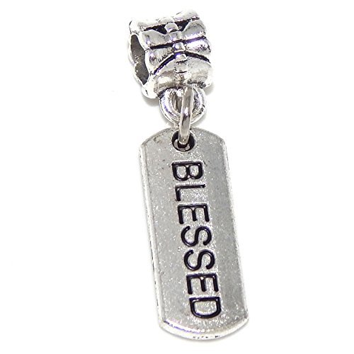 silver-plated-dangling-blessed-bead-charm
