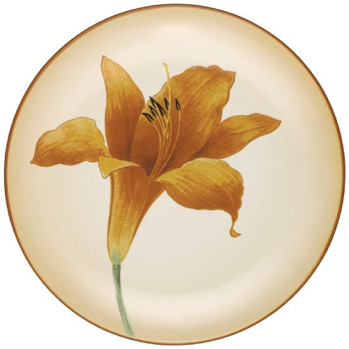 Noritake Colorwave Daylily Accent Plate, Terra (Colorwave Accent)