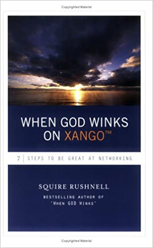 WHEN GOD WINKS PDF