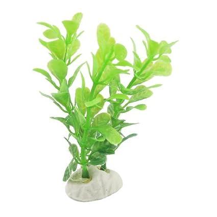Amazon.com : eDealMax DE 5 piezas de plástico acuario de la decoración de la hierba/planta, DE 3, 5 pulgadas, Verde : Pet Supplies