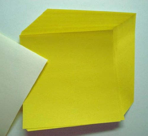 Yellow Origami Paper 50 sheets #N8288 Photo #2