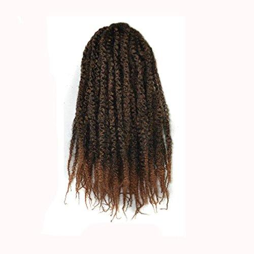 Silk 12' Single (Lucoo Women's Gradient Color Twist Crochet Braids Wigs Extensions Synthetic Hair (D))