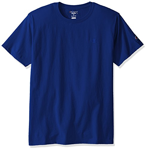 Champion Men's Classic Jersey T-Shirt, Surf The Web, XL