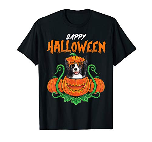 Border Collie Halloween Costumes Dog Halloween Party