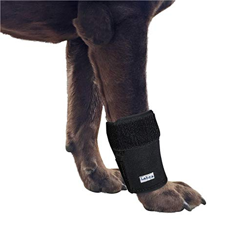 Labra Dog Canine Front Leg Compression Wrap Sleeve for sale  Delivered anywhere in USA