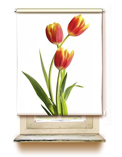 gardinen for life Blind Tulip   Clip Fit ROLLER BLIND SCREEN WITH