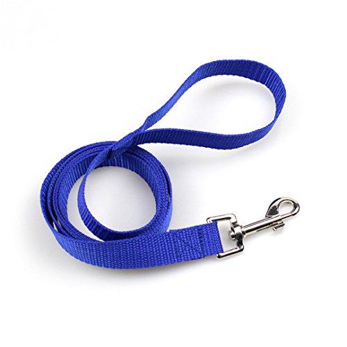 VBHFKD Pet Dog Leash Nylon Leash for Dogs 5 Colors 3M 4.5M 6M 10M Walking Training Leash Cats Dogs Harness Collar Leash Strap Belt Blue - Bath Five Fluorescent Light