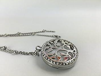 d42953b19668 Amazon.com  Stunning Aromatherapy Necklace diffuser